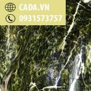 dc38861669399667cf28